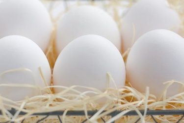 高齢でも胚盤胞まで育つでしょうか?