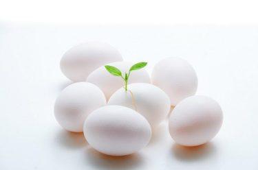 卵胞が多数育つのに採れる卵子の数が少ないのはなぜ?