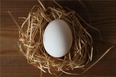 卵子の発育が悪いのが心配です。