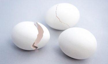 「たまご」をめぐる生殖医療の最新技術